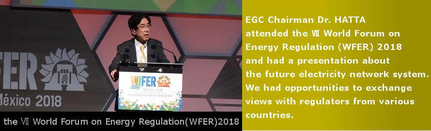EGC Chairman Dr. HATTA attended the Ⅶ World Forum on Energy Regulation 2018. See the details.